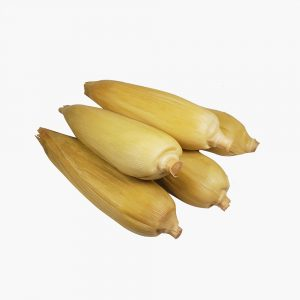 MT-FRUIT-fruit-and-vegetables-manufacturer-fresh-produce-supplier-in-Vietnam-frozen-corn-vegetables-processing-company-fresh-fruits-fresh-vegetables-MTFruit-corn