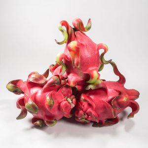 MT-FRUIT-fruit-and-vegetables-manufacturer-fresh-produce-supplier-in-Vietnam-frozen-fruits-frozen-vegetables-processing-company-fresh-fruits-fresh-vegetables-MTFruit-dragon-fruit-2