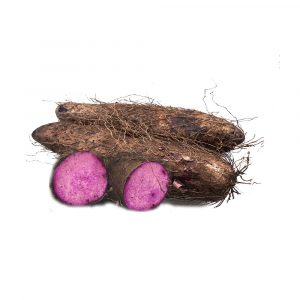 MT-FRUIT-fruit-and-vegetables-manufacturer-fresh-produce-supplier-in-Vietnam-frozen-yams-crushed-yams-vegetables-processing-company-fresh-fruits-fresh-vegetables-MTFruit-yams-3