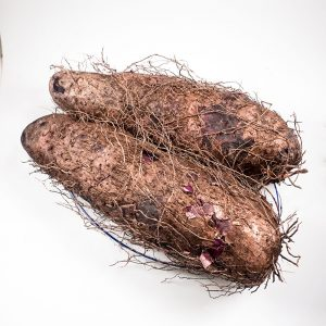 MT-FRUIT-fruit-and-vegetables-manufacturer-fresh-produce-supplier-in-Vietnam-frozen-yams-crushed-yams-vegetables-processing-company-fresh-fruits-fresh-vegetables-MTFruit-yams-4