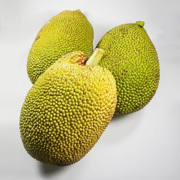 MT-FRUIT-fruit-and-vegetables-manufacturer-fresh-produce-supplier-in-Vietnam-frozen-fruits-frozen-vegetables-processing-company-fresh-fruits-fresh-vegetables-MTFruit-Jackfruit