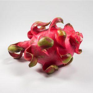 MT-FRUIT-fruit-and-vegetables-manufacturer-fresh-produce-supplier-in-Vietnam-frozen-fruits-frozen-vegetables-processing-company-fresh-fruits-fresh-vegetables-MTFruit-dragon-fruitt