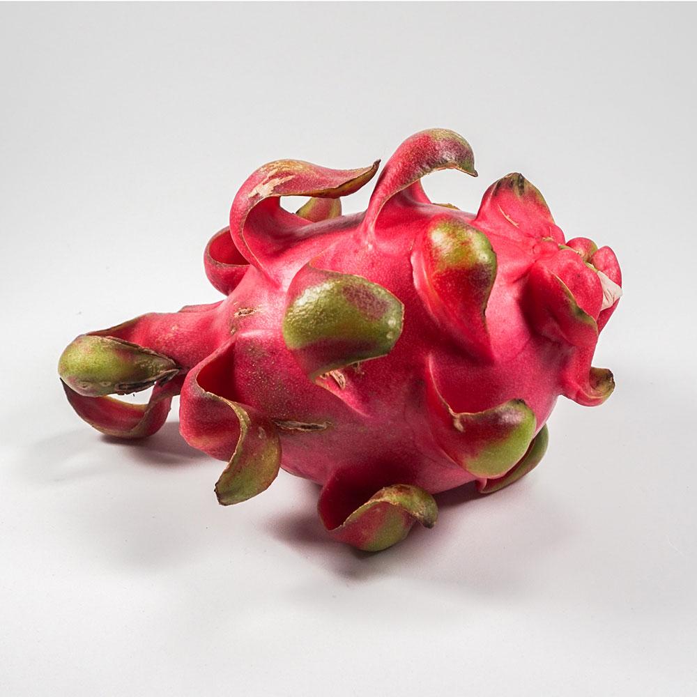MT Fruit trái cây rau củ quả tươi nhà sản xuất trái cây đông lạnh rau củ quả đông lạnh các sản phẩm nông sản đông lạnh tại Vietnam xuất khẩu toàn thế giới nhà cung cấp trái cây MTFruit thanh long
