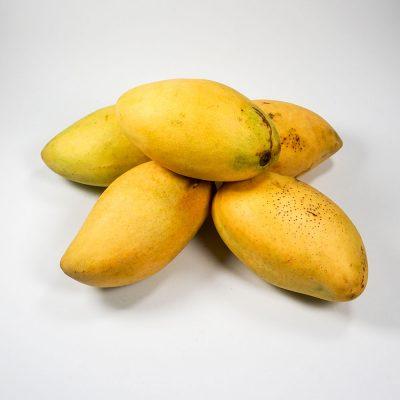 MT Fruit trái cây rau củ quả tươi nhà sản xuất trái cây đông lạnh rau củ quả đông lạnh các sản phẩm nông sản đông lạnh tại Vietnam xuất khẩu xoài đông lạnh MTFruit xoài
