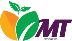 MTFruit | Fruit & Vegetables Global Supplier