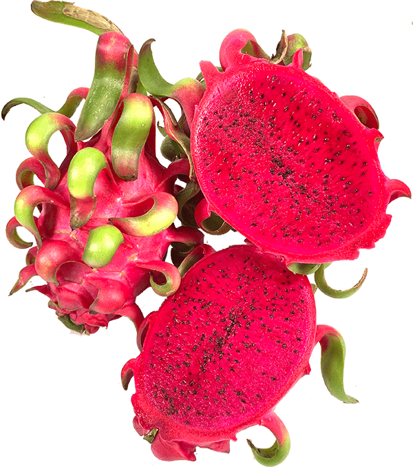 MT-Fruit-fruits-and-vegetables-fresh-fruits-and-vegetables-frozen-fruits-and-frozen-vegetables-MTFruit-company-Vietnam-dragon-fruits
