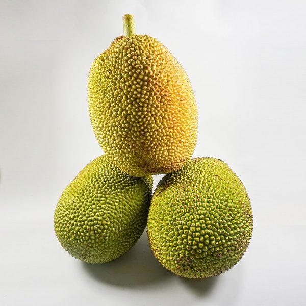 MT-FRUIT-fruit-and-vegetables-manufacturer-fresh-produce-supplier-in-Vietnam-frozen-fruits-frozen-vegetables-processing-company-fresh-fruits-fresh-vegetables-MTFruit-Jackfruit-2